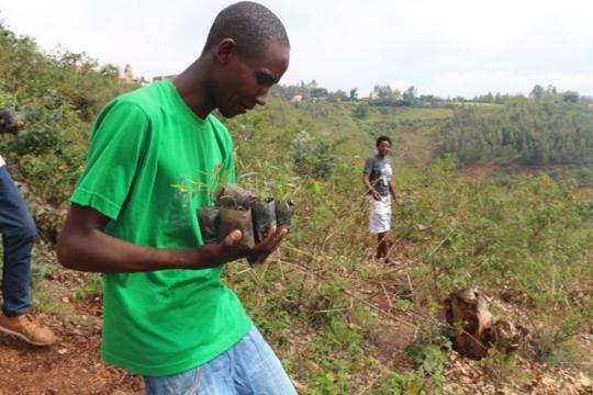 Safi Life tree planting community service, Rwanda