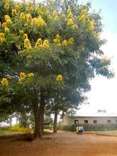 Rwanda in the summertime