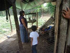 Inside their first poultry house