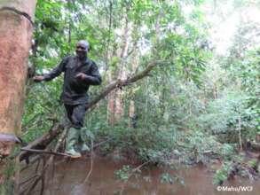 Anti-poaching team crossing a river