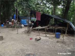 Illegal chewing stick harvester camp