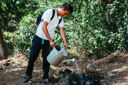 A SAT student working on agricultural project