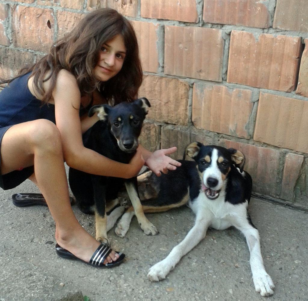 Marija loves all the animals