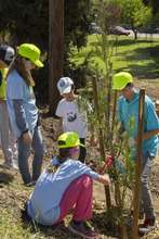 Youth Manager Alum Julian helps team plant a tree