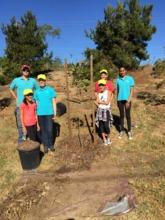 New Planting Sups, Margot, David, Ashley & Natalie