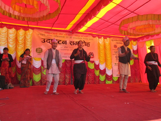 Dancing at NFDN Program