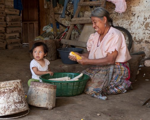 Change the lives of 100 Mayan Families