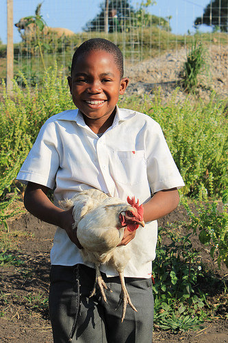 Thanda student enjoys learning about chickens!