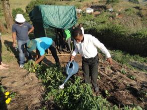Learning to plant at Sizanayo