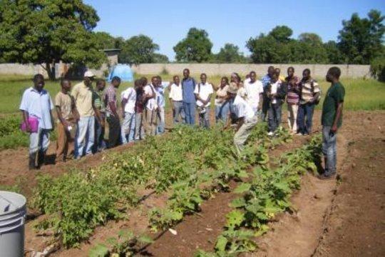 Teaching about Bucket Drip Irrigation