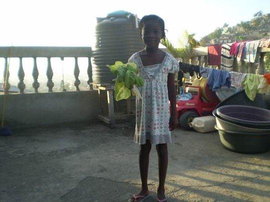 First Harvest, Rooftop Garden, Haiti