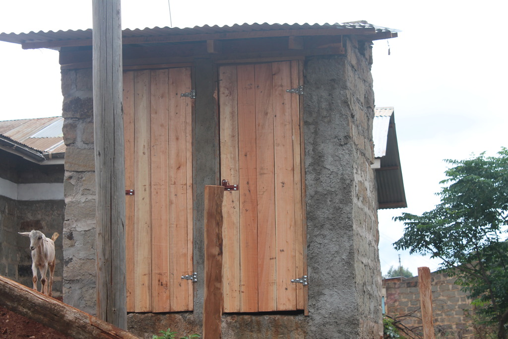 Our new two-stall toilet