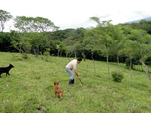 Save San Luis Forest, Save This Family