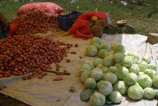 One time grant to start vegetable & fruit vending