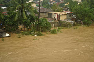 Floods have destroyed or damaged countless houses