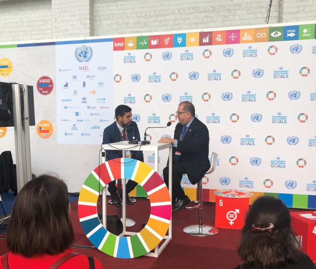 Panel on Sustainable Development Goals