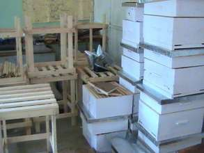 Bee Hives & Stands