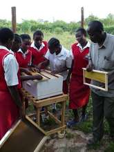 Teacher Meshack shows the hives to younger student