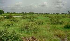 Rainwater catchment basin