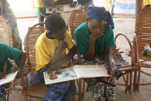 Partner Reading Activity