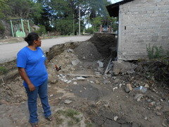 A woman observing the flood damages