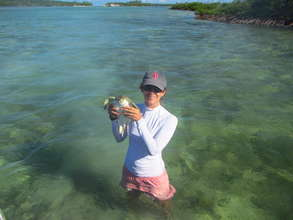 Lead scientist Annabelle Brooks with a turtle.