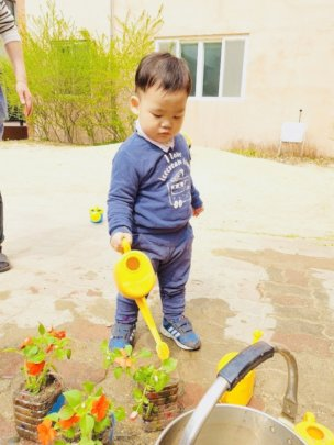 Jay tends to the garden, watering the flowers.