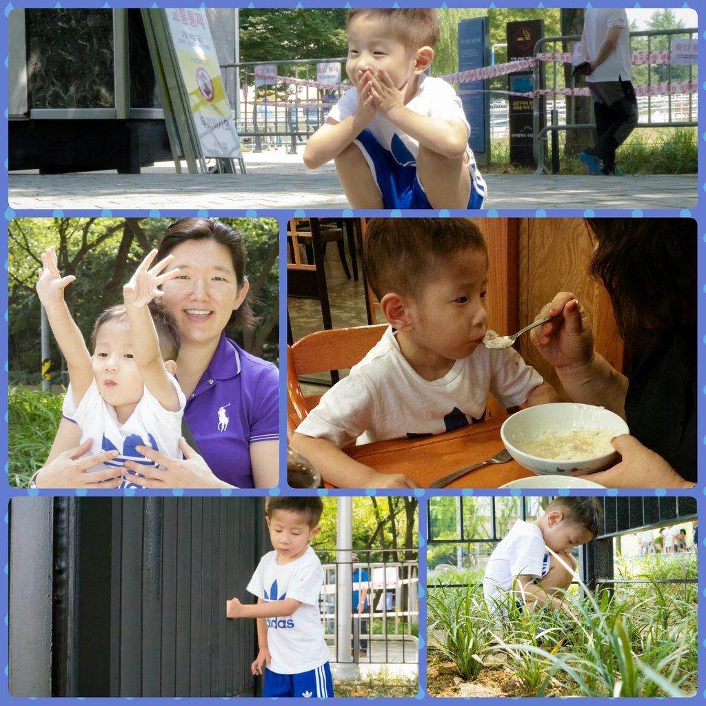 Minho, US age 4, August 2015 (collage)
