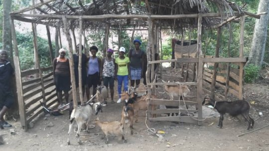 Women goat breeders