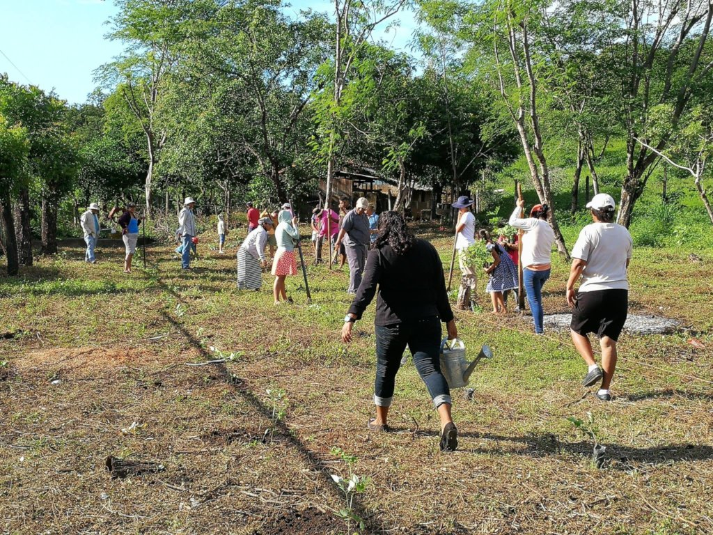 Community Reforestation Day