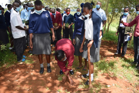 Mutulani school Head girl planting a tree