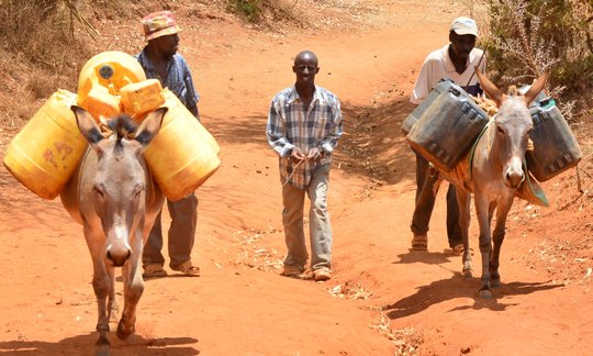 Water Vendors deliver water to the community