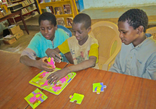Koumbia Library Users & Typical Bookshelves