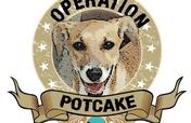 Operation Potcake - Nassau Bahamas