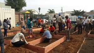 Eastmont Community Garden Build Day #2
