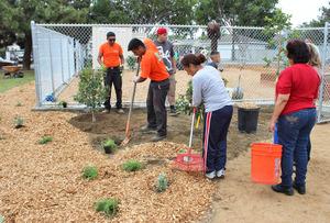 Wilmington Garden Build Day #2