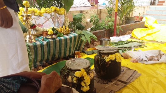 pongal celebration  at sri arunodayam