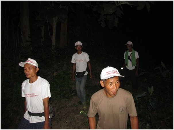 Squads patrolling by night
