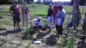 Instructor Joe teaching about a cucumber trellis
