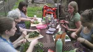 Medicinal herb class