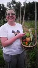 A full harvest basket