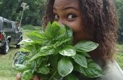 Teach people to grow their own healthy food in DC
