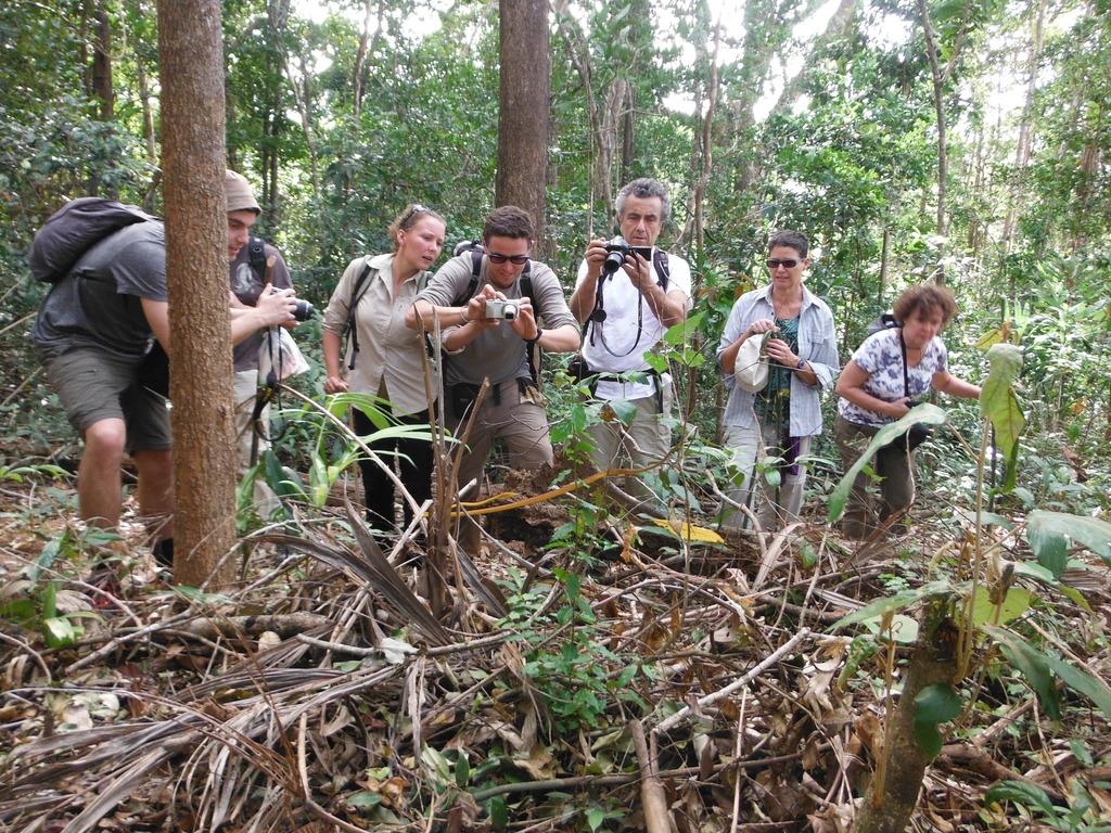 Shooting yellow snake during trekking
