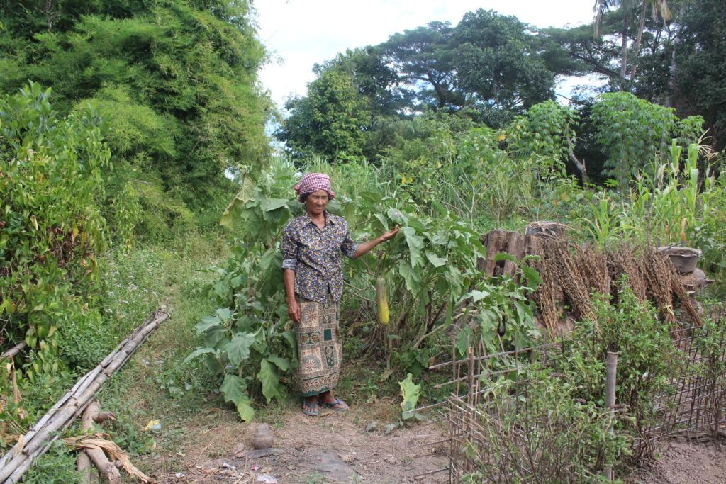 Home garden of villager in Koh Preah