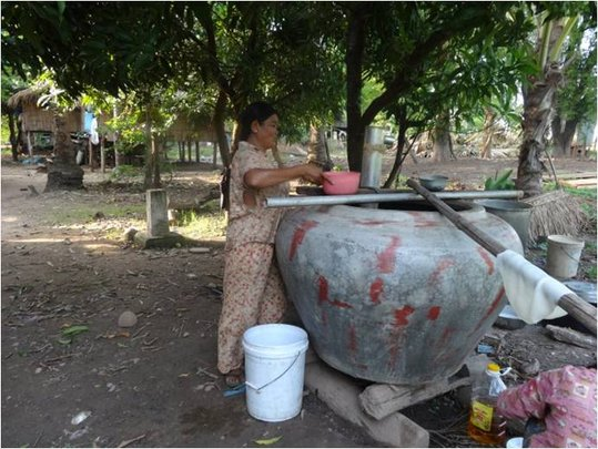 Mrs. Channy collecting wine rice for pig feed
