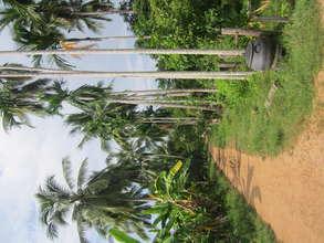 Koh Preah island