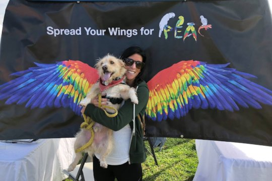 GET YOUR RAINBOW WINGS ON TO SUPPORT PEAC!