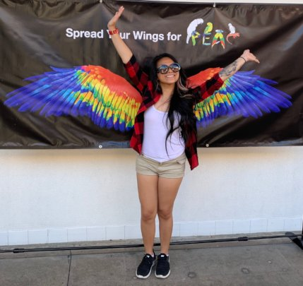 "BECOME ""INSTA-FAMOUS"" WITH OUR RAINBOW WINGS!"