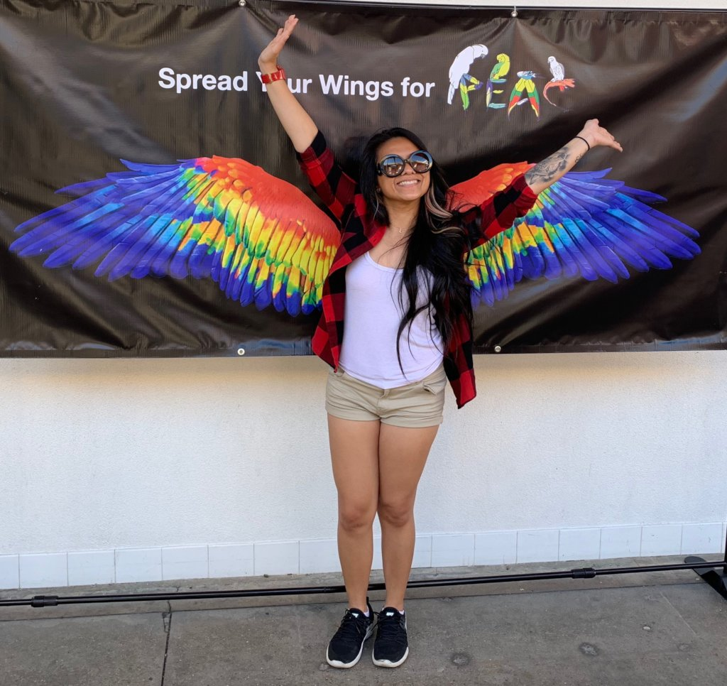 """BECOME """"INSTA-FAMOUS"""" WITH OUR RAINBOW WINGS!"""