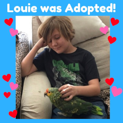 Louie was Adopted!